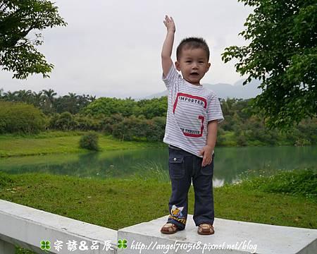 【夢幻雲山水】花蓮縣.壽豐鄉19.jpg
