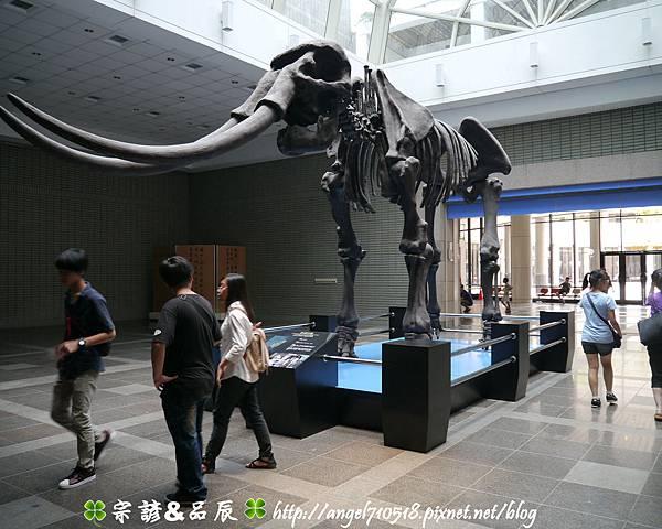 國立自然科學博物館【台中市.北區】05.jpg