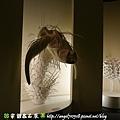 國立自然科學博物館【台中市.北區】06.jpg