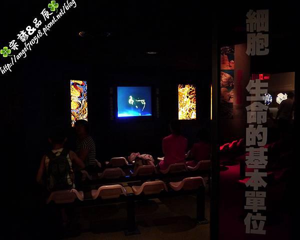 國立自然科學博物館【台中市.北區】12.jpg