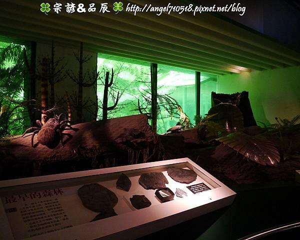 國立自然科學博物館【台中市.北區】16.jpg