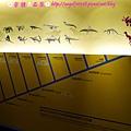 國立自然科學博物館【台中市.北區】20.jpg