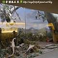 國立自然科學博物館【台中市.北區】19.jpg
