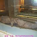國立自然科學博物館【台中市.北區】52.jpg