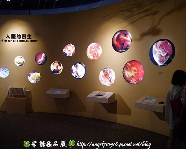 國立自然科學博物館【台中市.北區】54.jpg