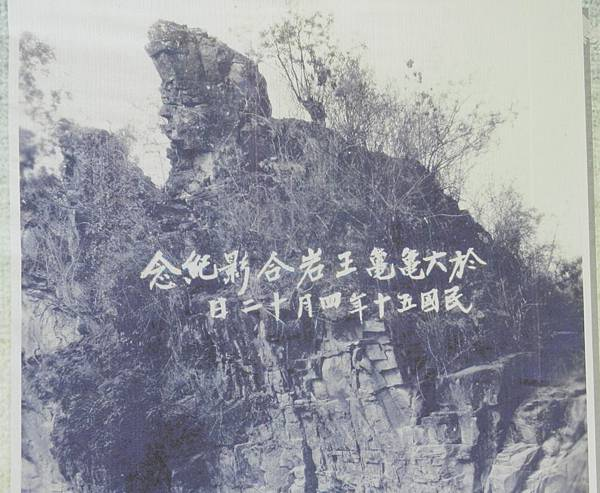 DSCN7461