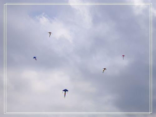 26滿天的風箏.JPG