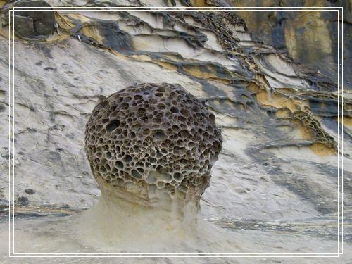 27蜂窩岩.JPG