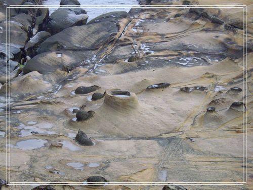 28海蝕地形.JPG