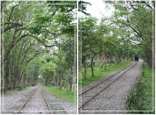 287羅東林業文化園區景色.jpg