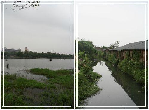 289羅東林業文化園區景色.jpg
