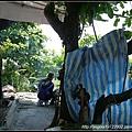 2012Tour-D6-現撈龍蝦 (6)