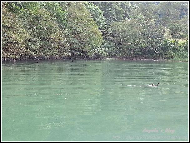 20121102梅花湖07