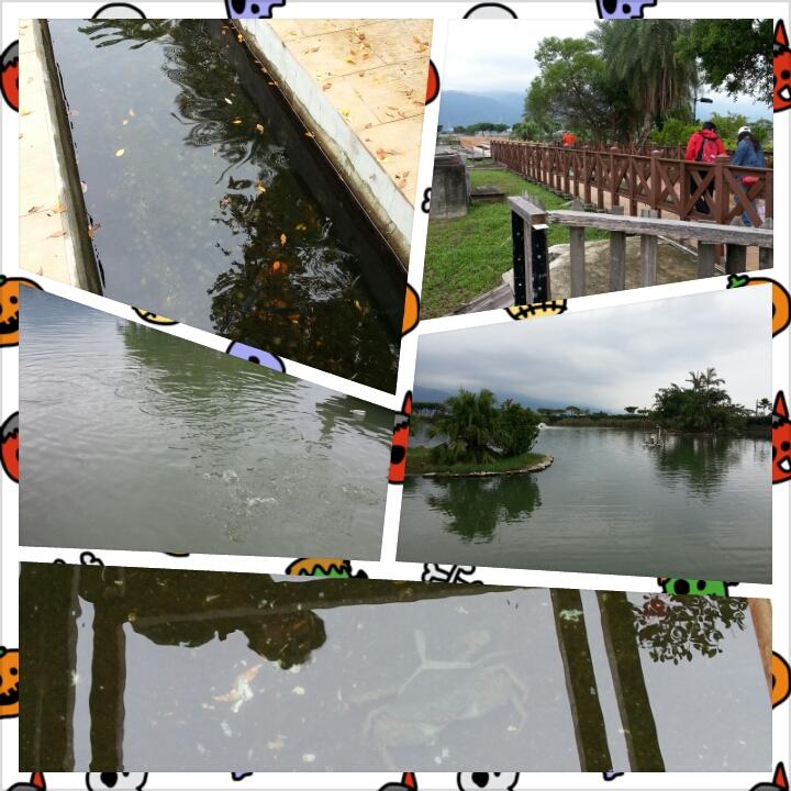 PhotoGrid_1352879049158