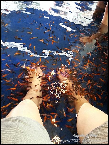 20121102礁溪湯圍溝09