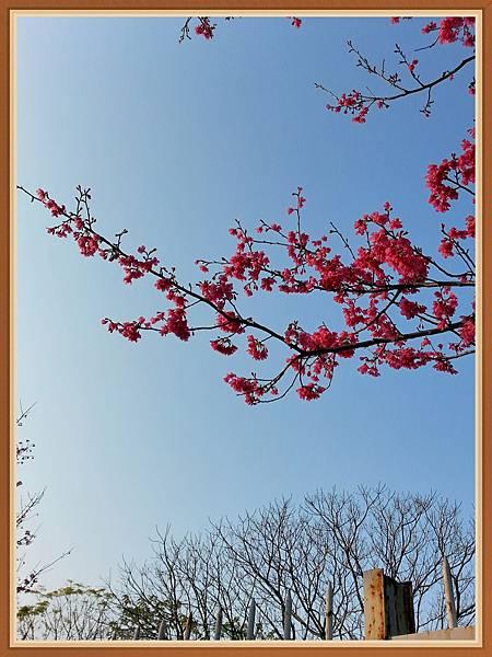 2014-01-30 16.10.57.jpg