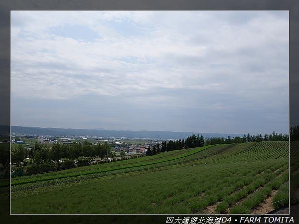 DSC02108.jpg