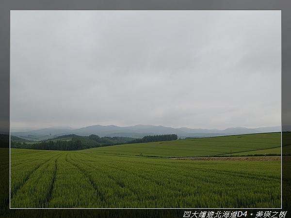 DSC02227.jpg