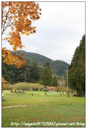 225武陵.JPG