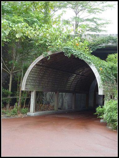 364花架隧道.jpg