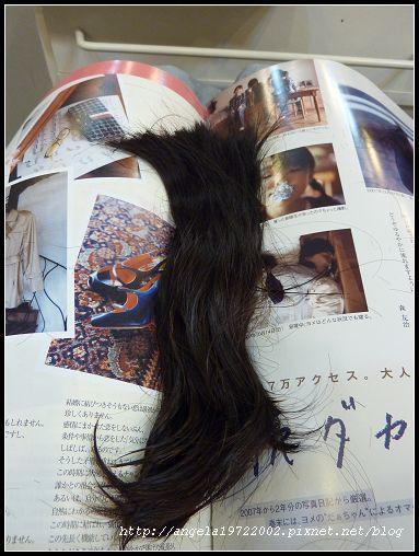 04剪下來的長髮.jpg