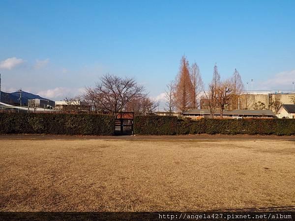 20180129宇治、琵琶湖_180223_0013.jpg
