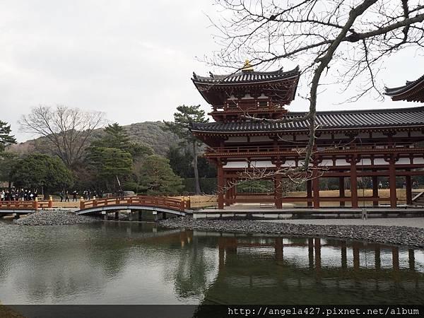 20180129宇治、琵琶湖_180223_0111.jpg