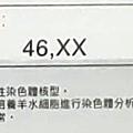 91733-1.jpg