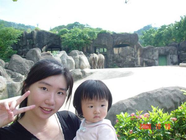 跟大象一起照相