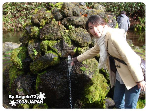 20081101_50.jpg