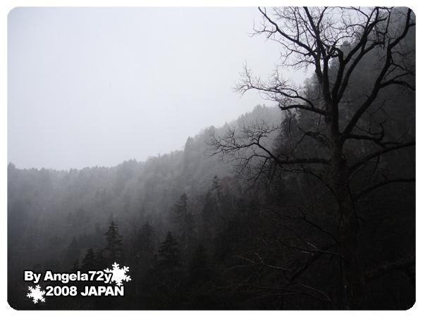 20081101_139.jpg