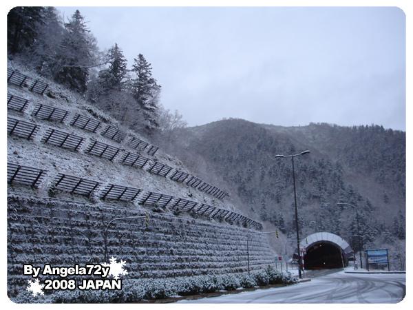 20081101_146.jpg