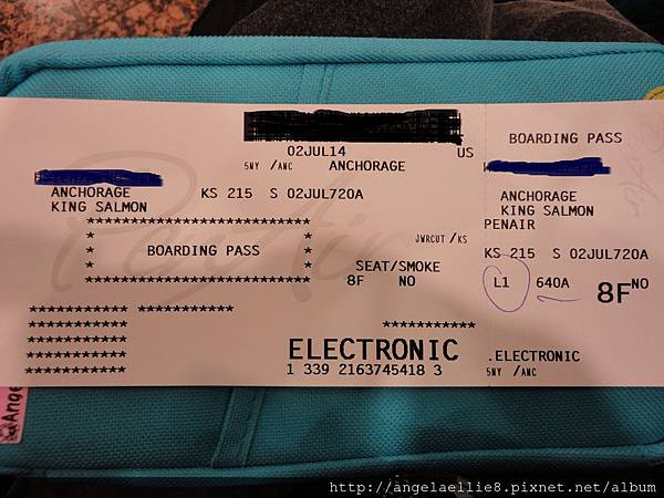 King Salmon flight ticket.jpg
