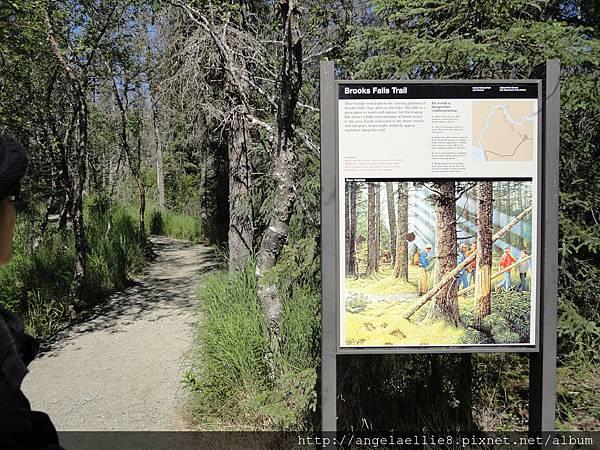 Brooks Fall Trail