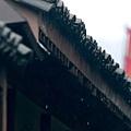 rain1 第19集.jpg