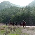 ep 32  horses 4.jpg
