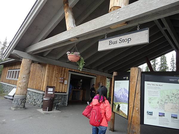 Denali Visitor Centre Bus Stop