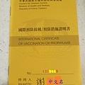 黃皮書 cover 2.jpg