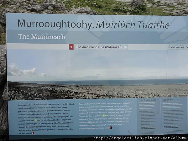 Murrosughtoohy