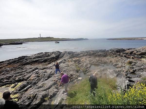 Portnahaven seals