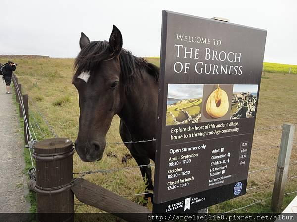 Broch of Gurness