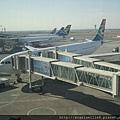 約翰尼斯堡南非航空