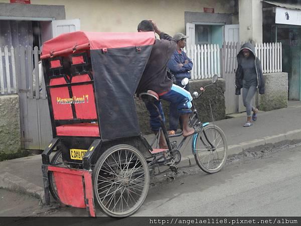 cycle-pousse