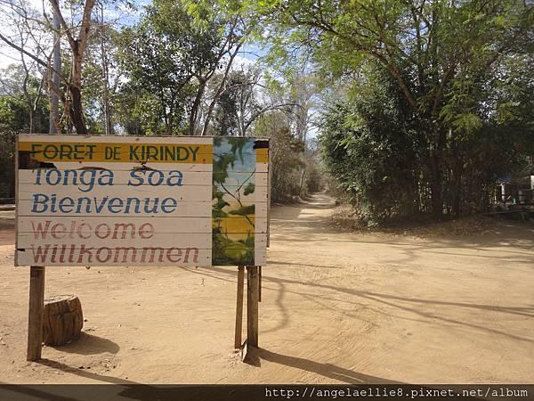 Kirindy Reserve
