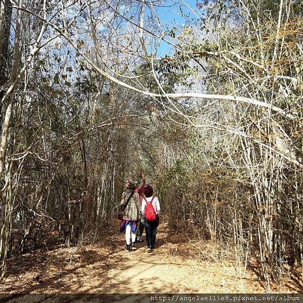馬達Kirindy Reserve
