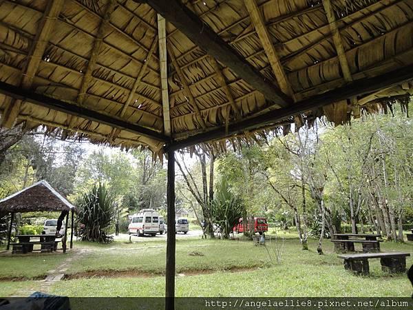 Analamazotra reserve NP