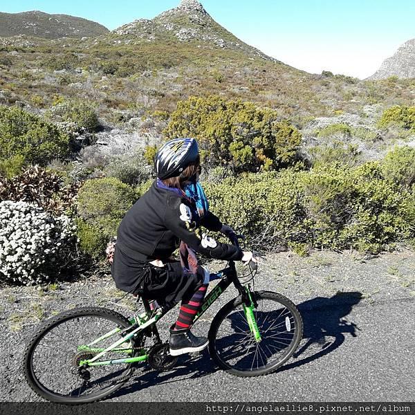 20170712Baz Bus mountain bike