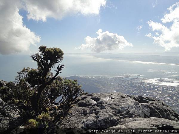 20170710 Table Mountain