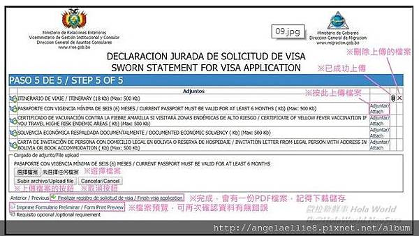 Bolivia Visa 9-2.jpg