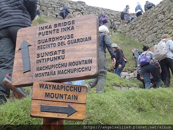 Wayna Picchu